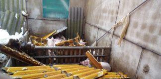 LA UNIÓ trasllada a la Generalitat la necessitat d'establir ajudes per a compra d'animals i reparació en granges